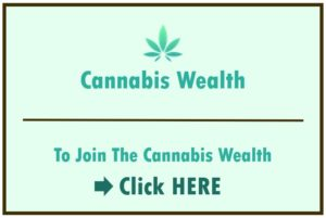 How to Invest in Cannabis Stocks Right Now • Benzinga